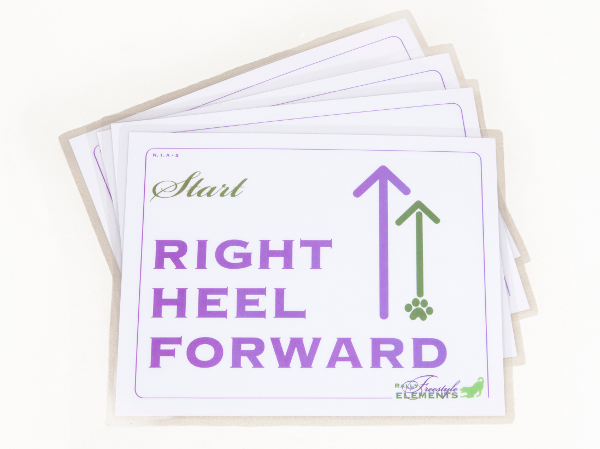 Rally-FrEe Flash Cards