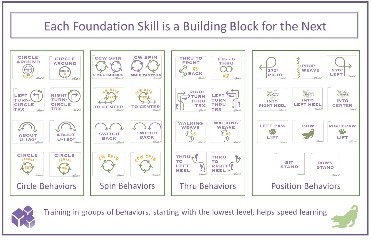 Building Blocks Poster